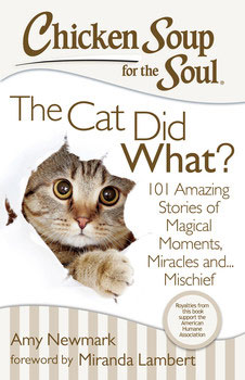 chicken-soup-for-the-soul-the-cat